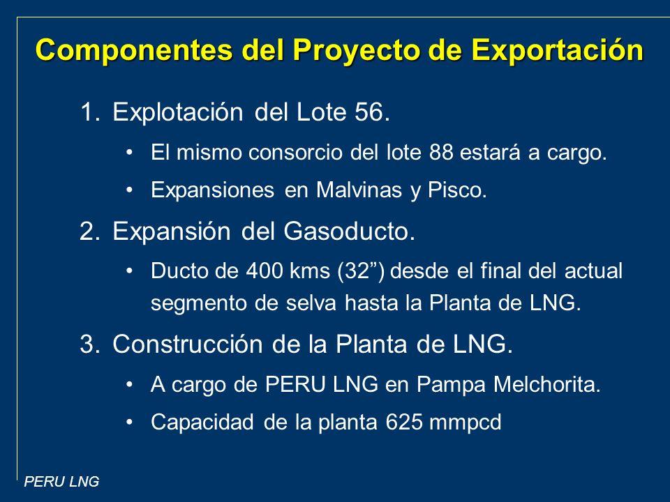 Componentes del Proyecto de Exportación
