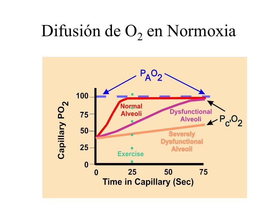 Difusión de O2 en Normoxia