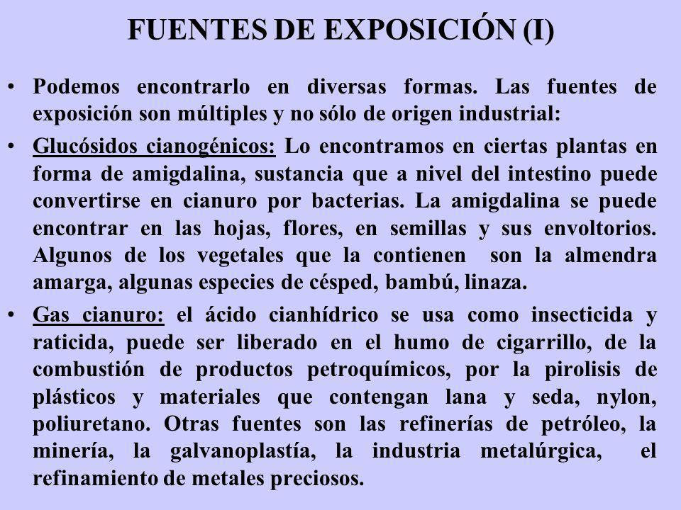 FUENTES DE EXPOSICIÓN (I)