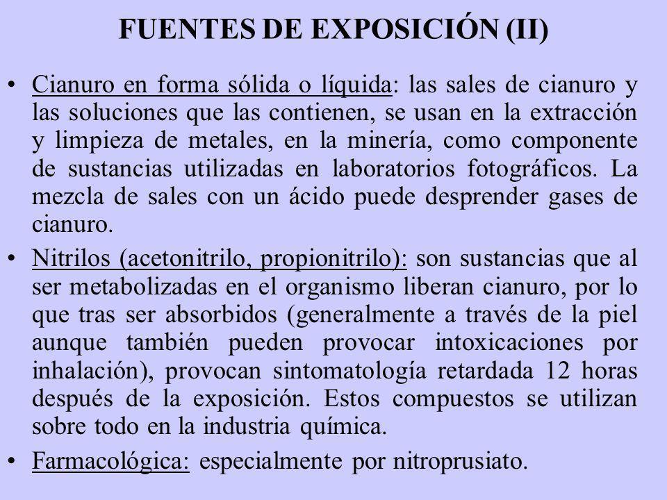 FUENTES DE EXPOSICIÓN (II)