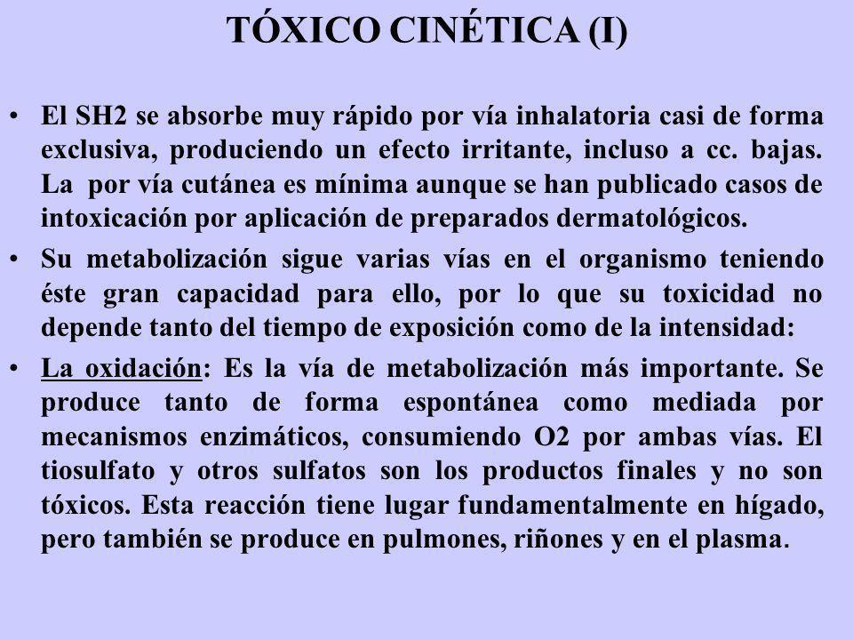 TÓXICO CINÉTICA (I)
