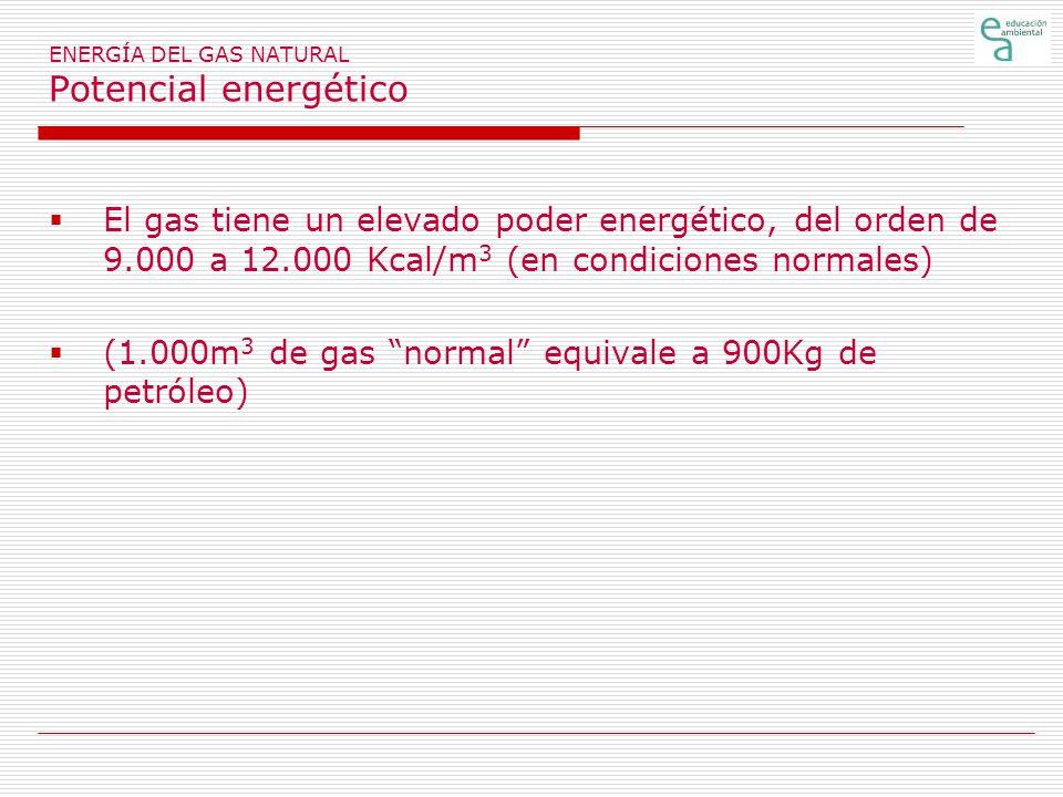 ENERGÍA DEL GAS NATURAL Potencial energético