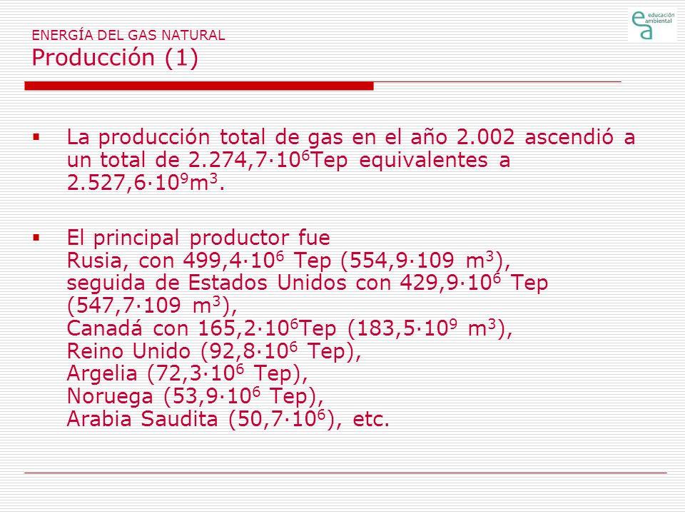 ENERGÍA DEL GAS NATURAL Producción (1)