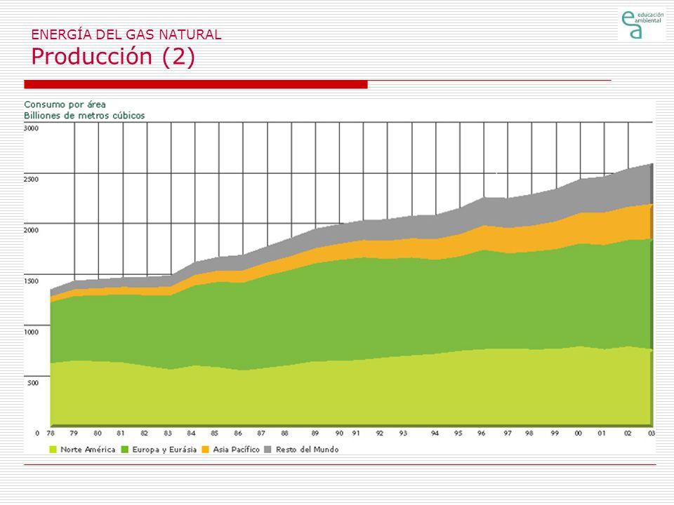 ENERGÍA DEL GAS NATURAL Producción (2)