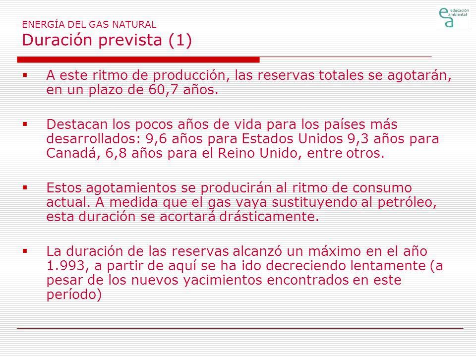 ENERGÍA DEL GAS NATURAL Duración prevista (1)