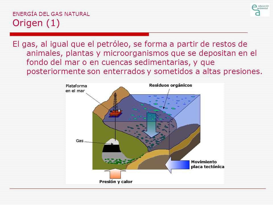 ENERGÍA DEL GAS NATURAL Origen (1)