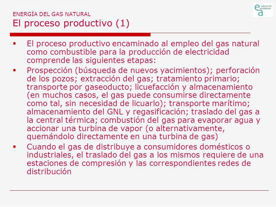 ENERGÍA DEL GAS NATURAL El proceso productivo (1)