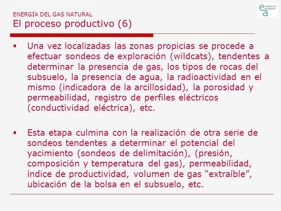 ENERGÍA DEL GAS NATURAL El proceso productivo (6)