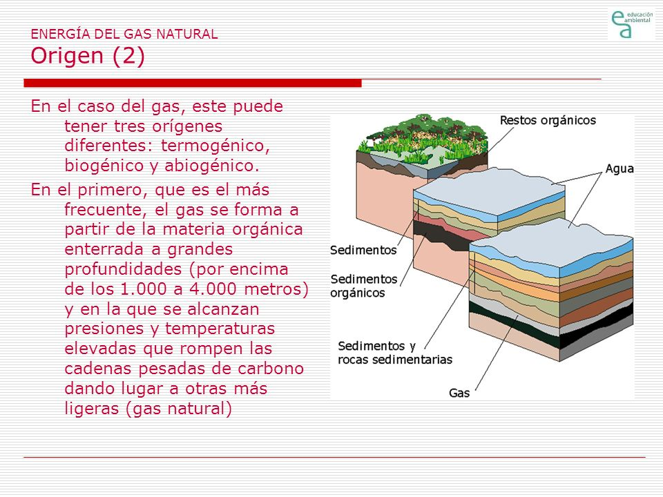 ENERGÍA DEL GAS NATURAL Origen (2)