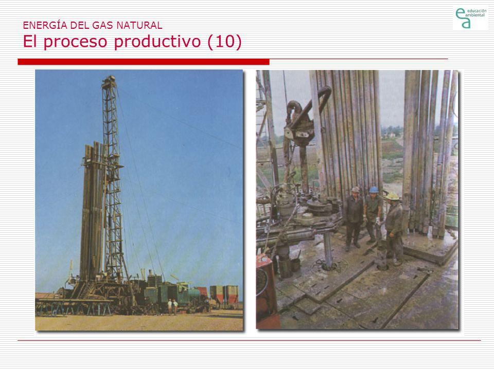 ENERGÍA DEL GAS NATURAL El proceso productivo (10)