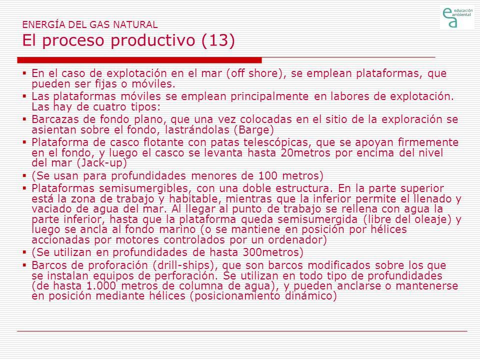 ENERGÍA DEL GAS NATURAL El proceso productivo (13)