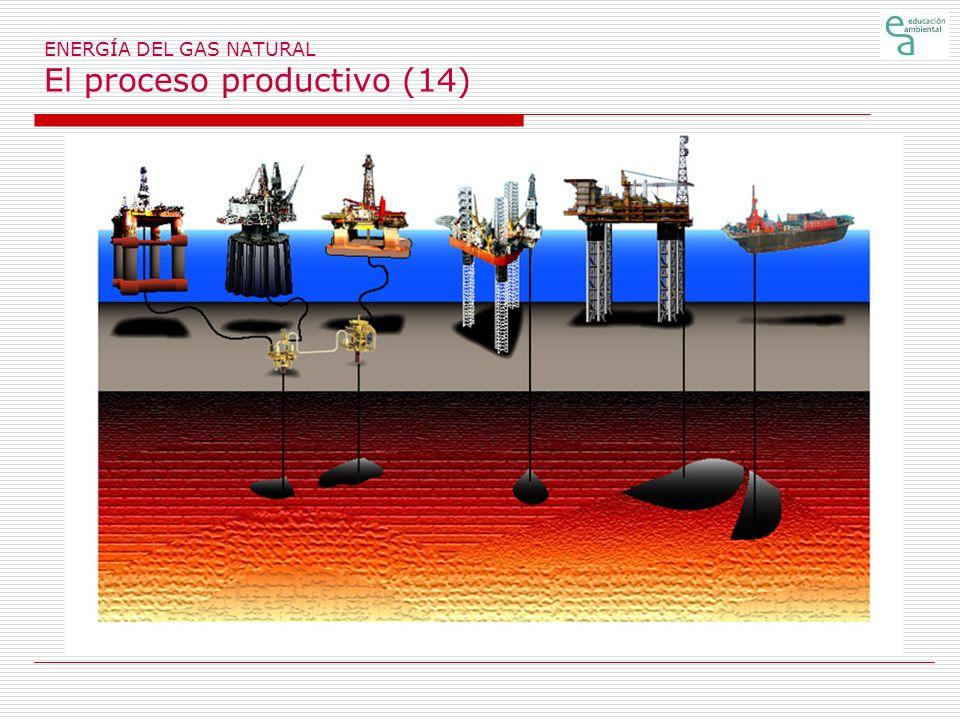ENERGÍA DEL GAS NATURAL El proceso productivo (14)