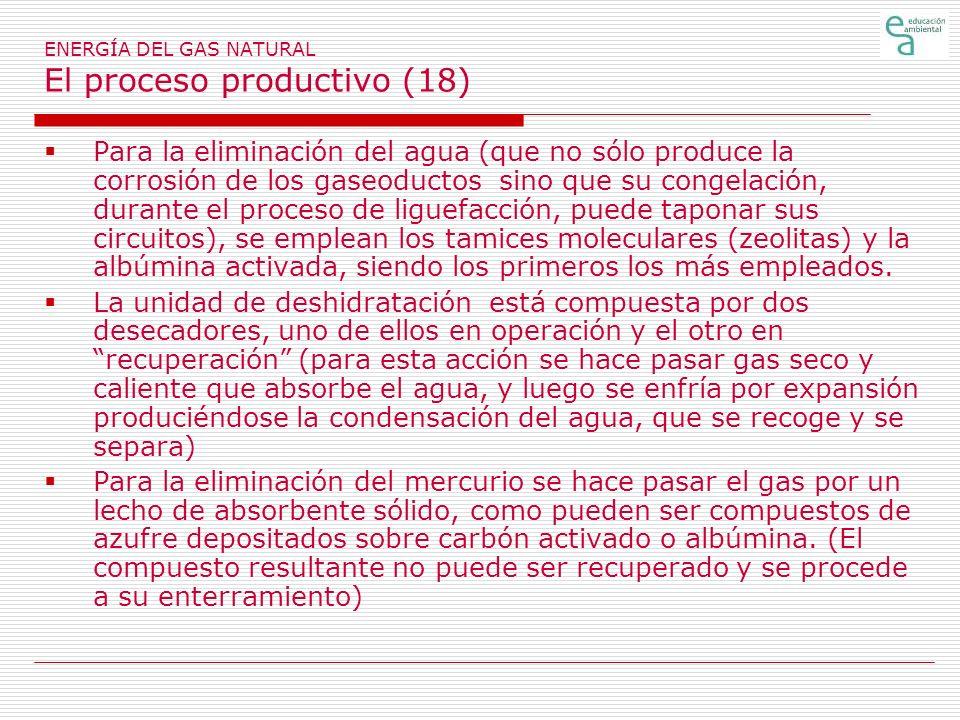 ENERGÍA DEL GAS NATURAL El proceso productivo (18)