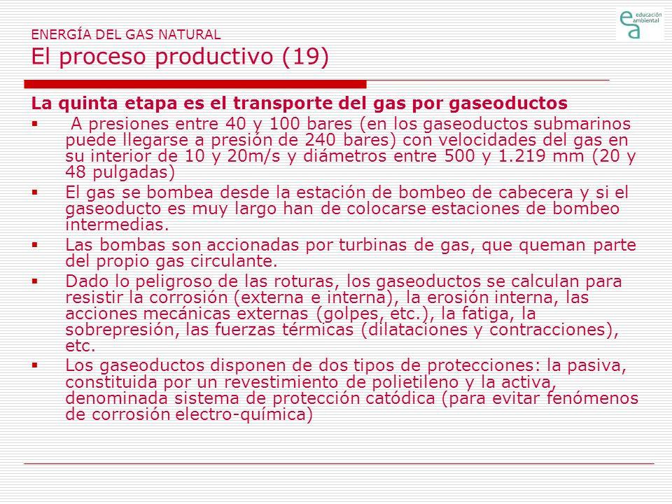 ENERGÍA DEL GAS NATURAL El proceso productivo (19)
