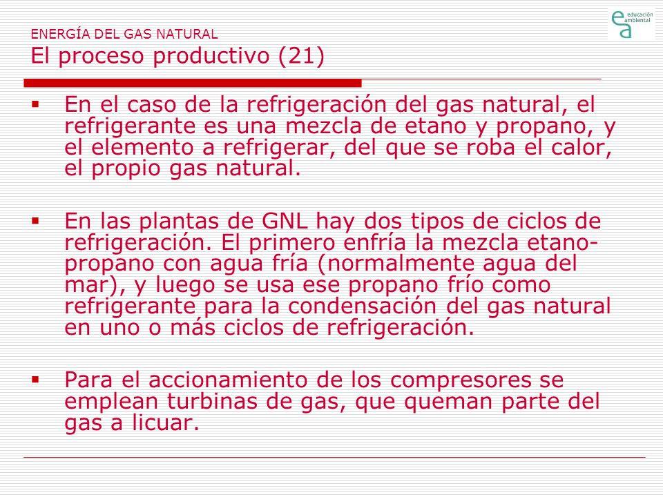 ENERGÍA DEL GAS NATURAL El proceso productivo (21)