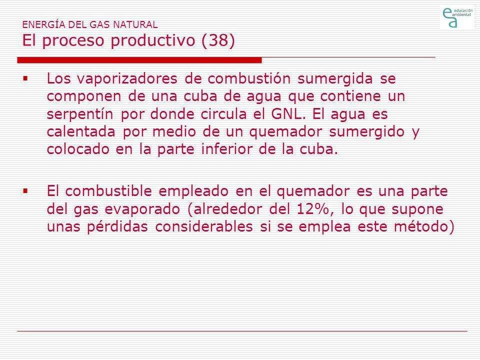 ENERGÍA DEL GAS NATURAL El proceso productivo (38)