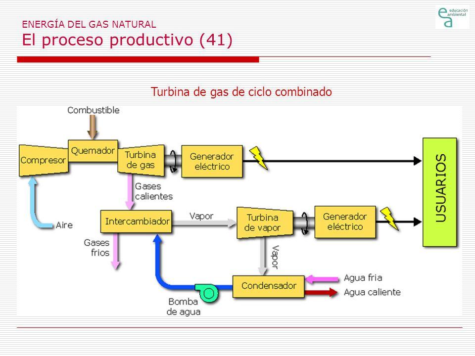 ENERGÍA DEL GAS NATURAL El proceso productivo (41)