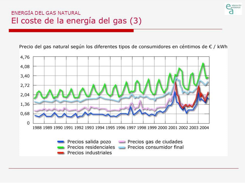 ENERGÍA DEL GAS NATURAL El coste de la energía del gas (3)