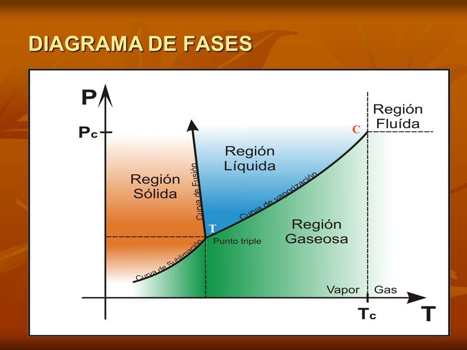 DIAGRAMA DE FASES C T