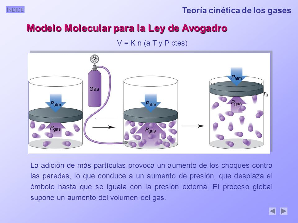 Modelo Molecular para la Ley de Avogadro
