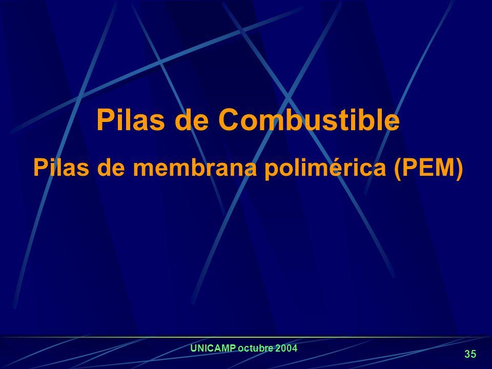 Pilas de membrana polimérica (PEM)