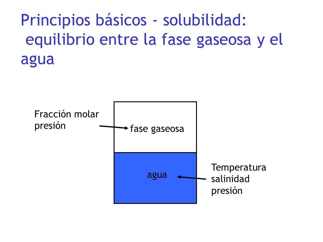 Principios básicos - solubilidad: equilibrio entre la fase gaseosa y el agua