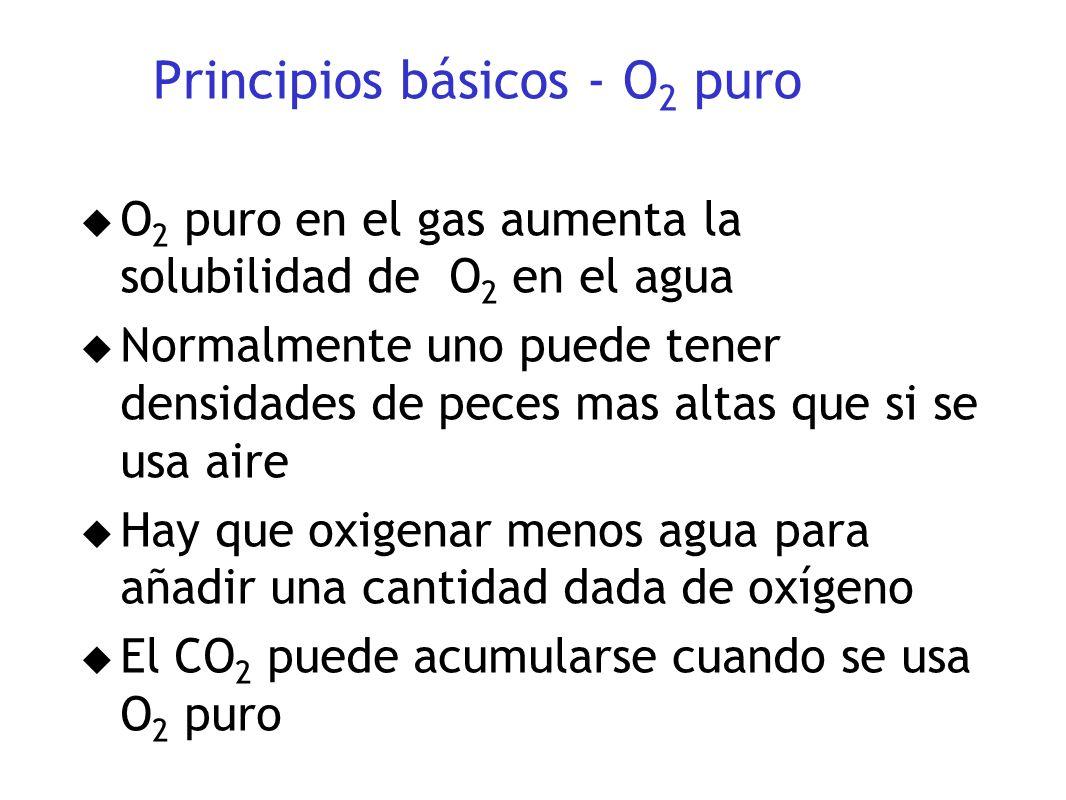 Principios básicos - O2 puro