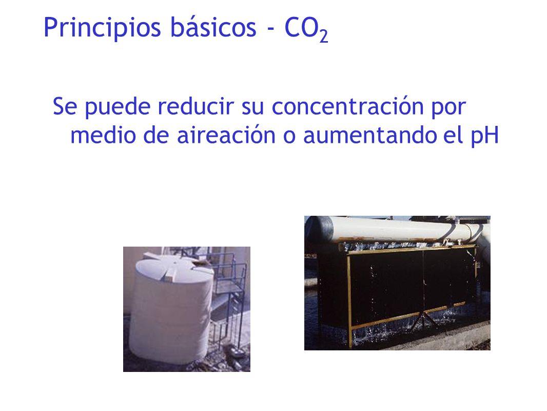 Principios básicos - CO2