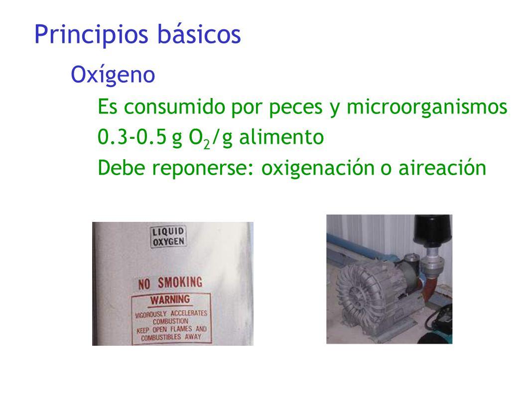 Principios básicos Oxígeno Es consumido por peces y microorganismos