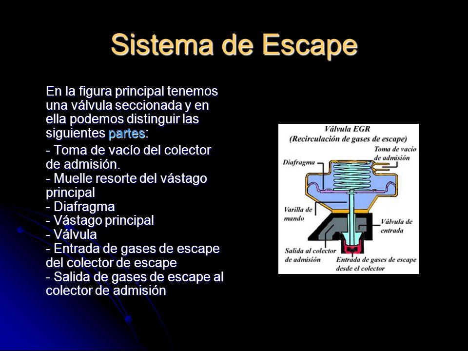 Sistema de Escape En la figura principal tenemos una válvula seccionada y en ella podemos distinguir las siguientes partes: