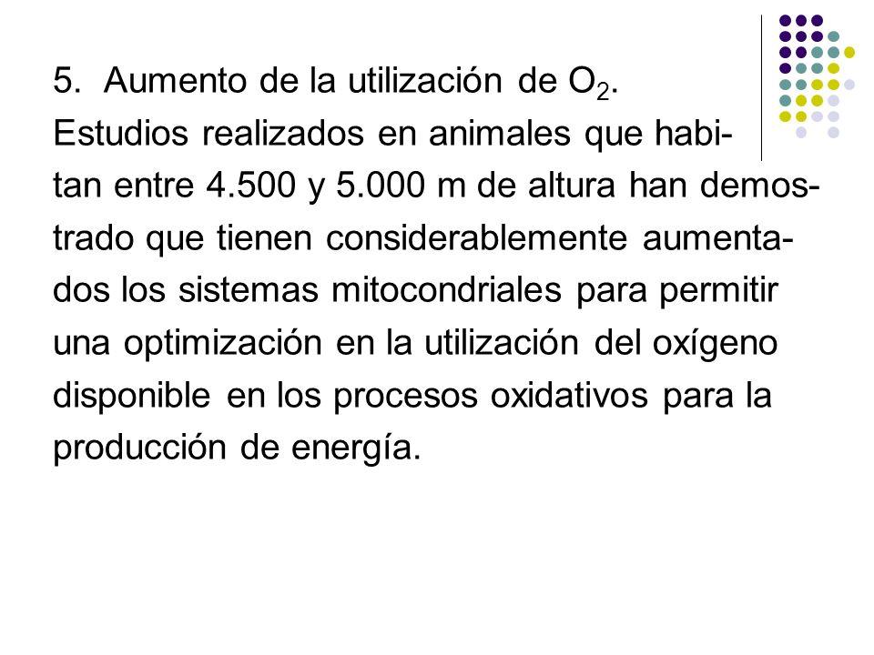 5. Aumento de la utilización de O2.
