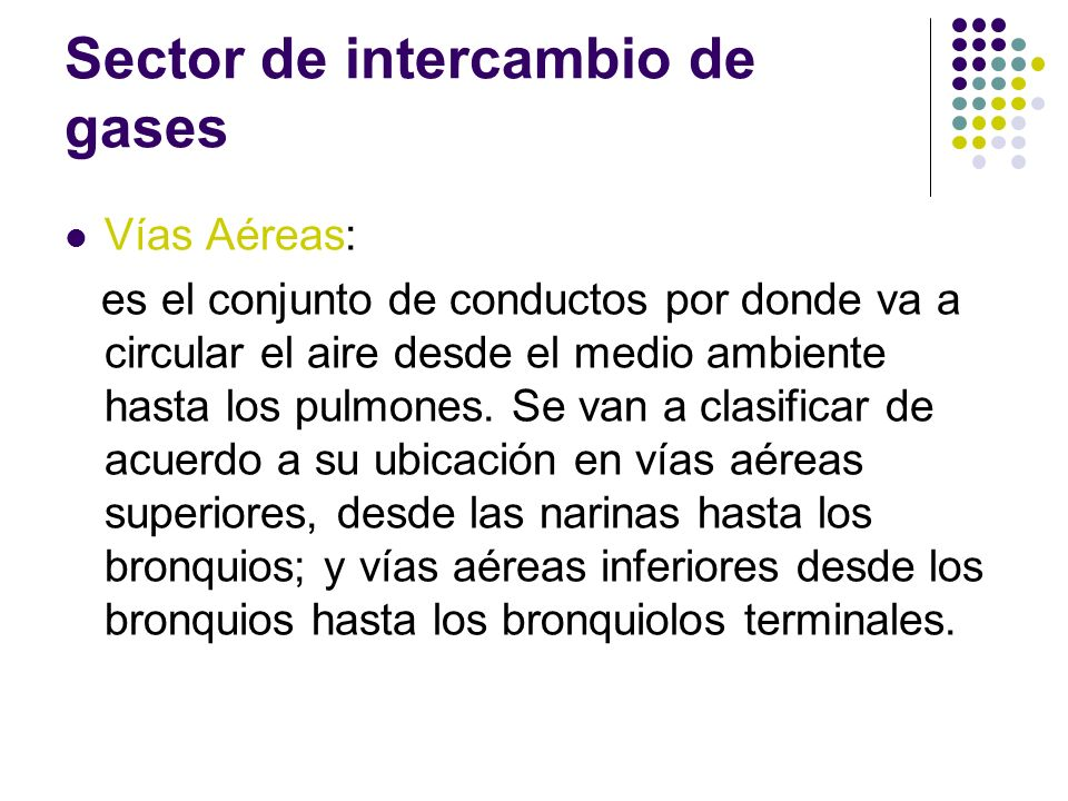 Sector de intercambio de gases