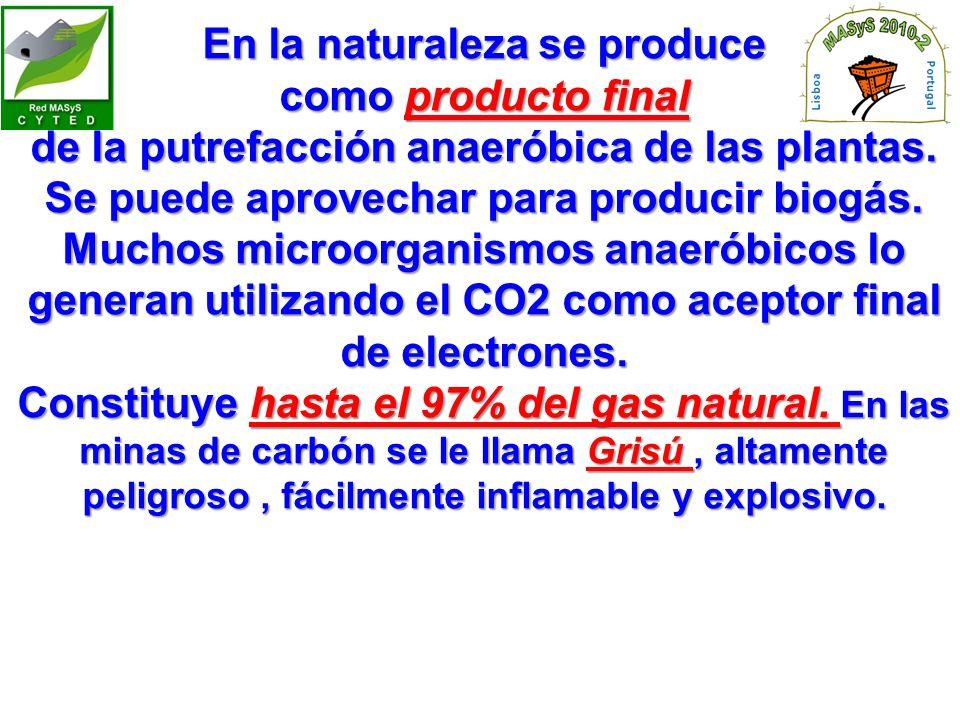 En la naturaleza se produce