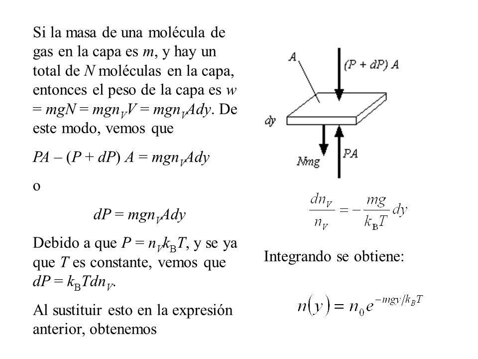 Si la masa de una molécula de gas en la capa es m, y hay un total de N moléculas en la capa, entonces el peso de la capa es w = mgN = mgnVV = mgnVAdy. De este modo, vemos que