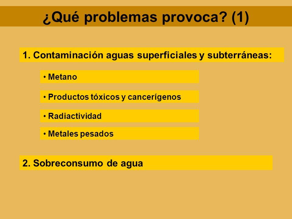 ¿Qué problemas provoca (1)