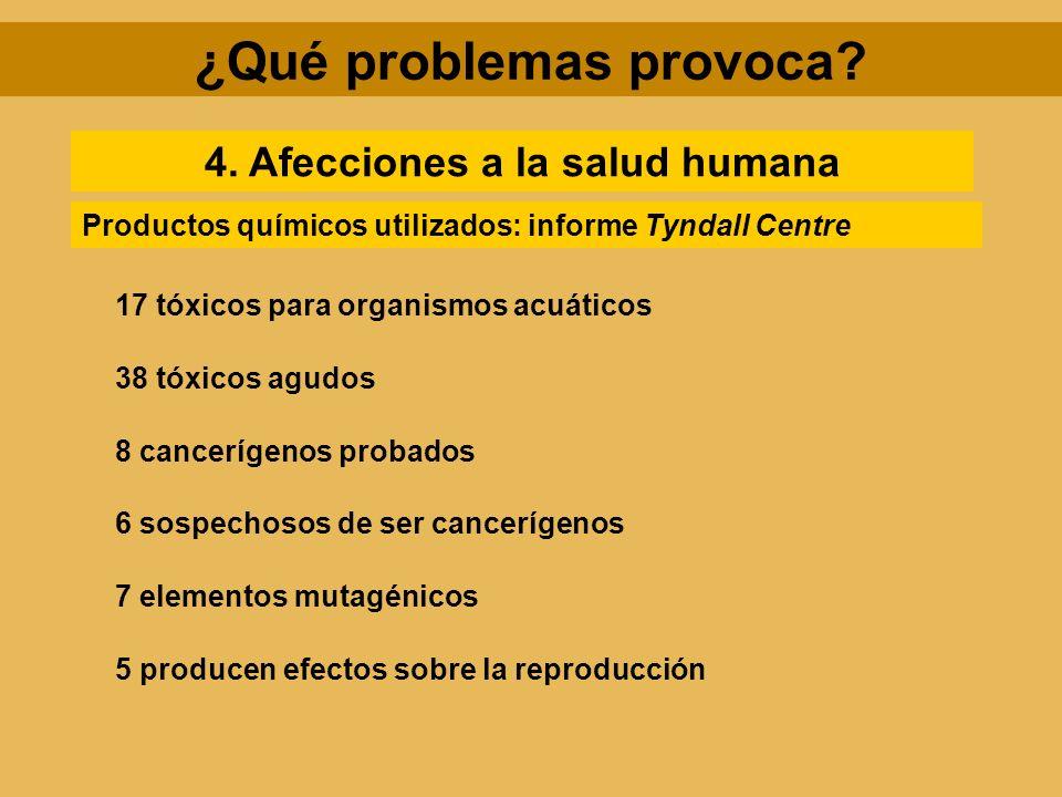 ¿Qué problemas provoca 4. Afecciones a la salud humana