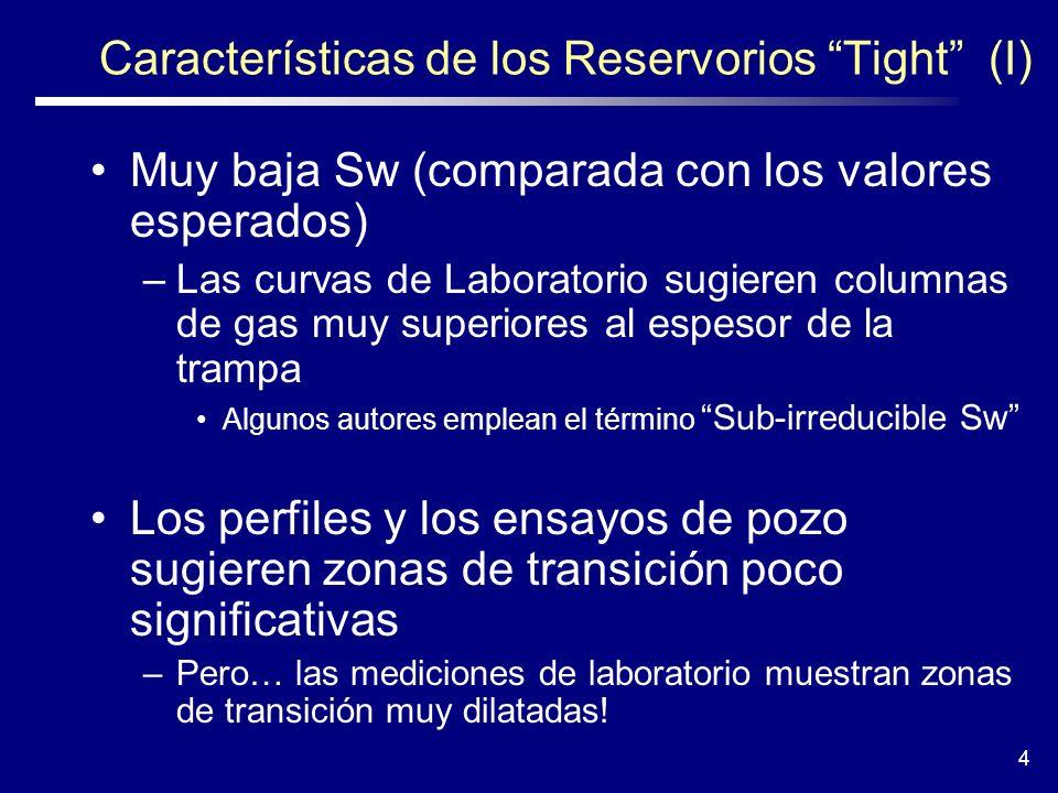 Características de los Reservorios Tight (I)