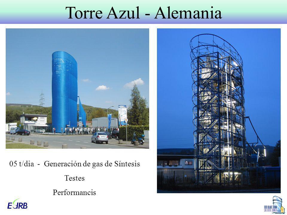 05 t/dia - Generación de gas de Síntesis