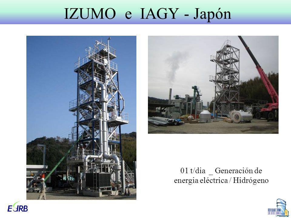 01 t/dia _ Generación de energia eléctrica / Hidrógeno