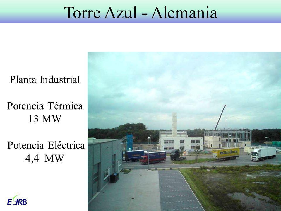 Planta Industrial Potencia Térmica 13 MW Potencia Eléctrica 4,4 MW