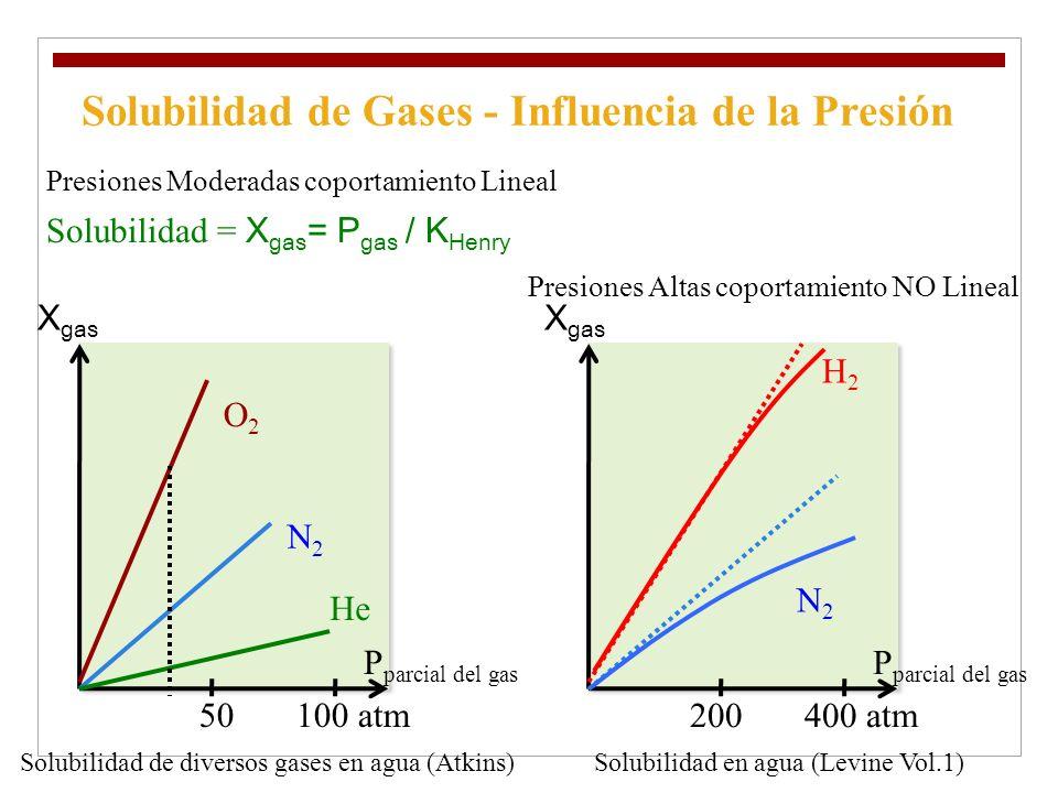 Solubilidad de Gases - Influencia de la Presión