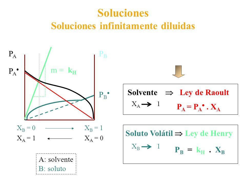 Soluciones infinitamente diluidas