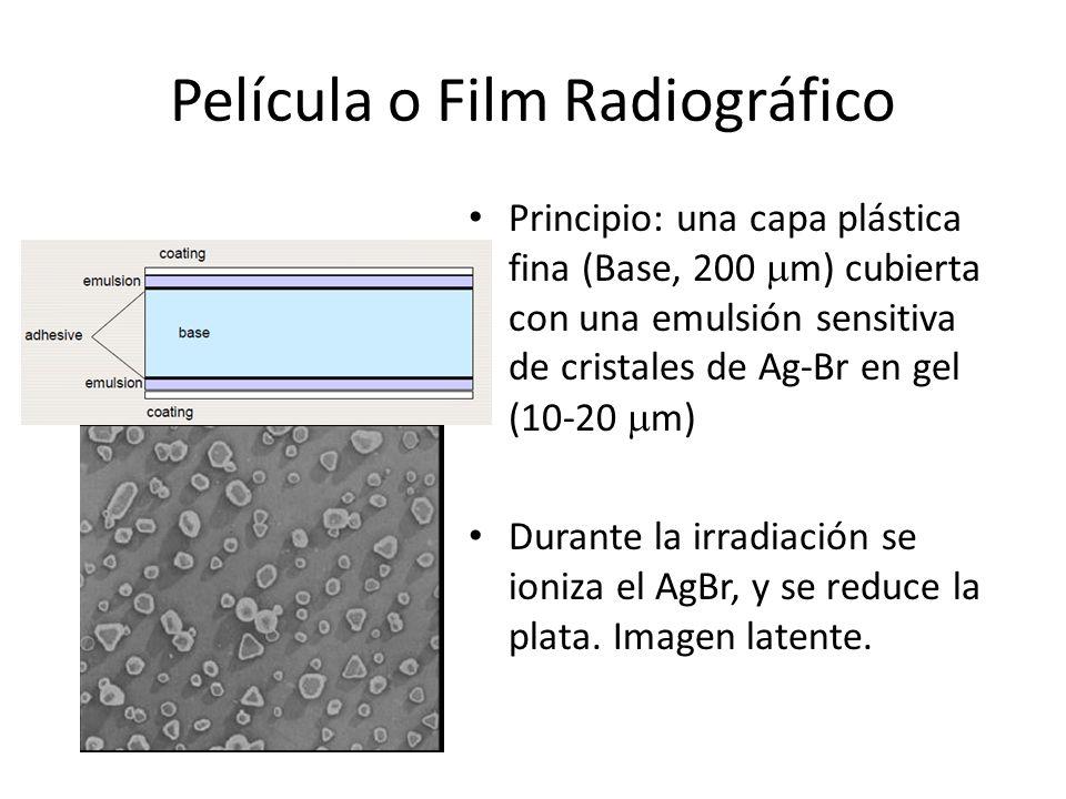 Película o Film Radiográfico