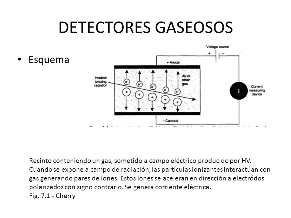 DETECTORES GASEOSOS Esquema