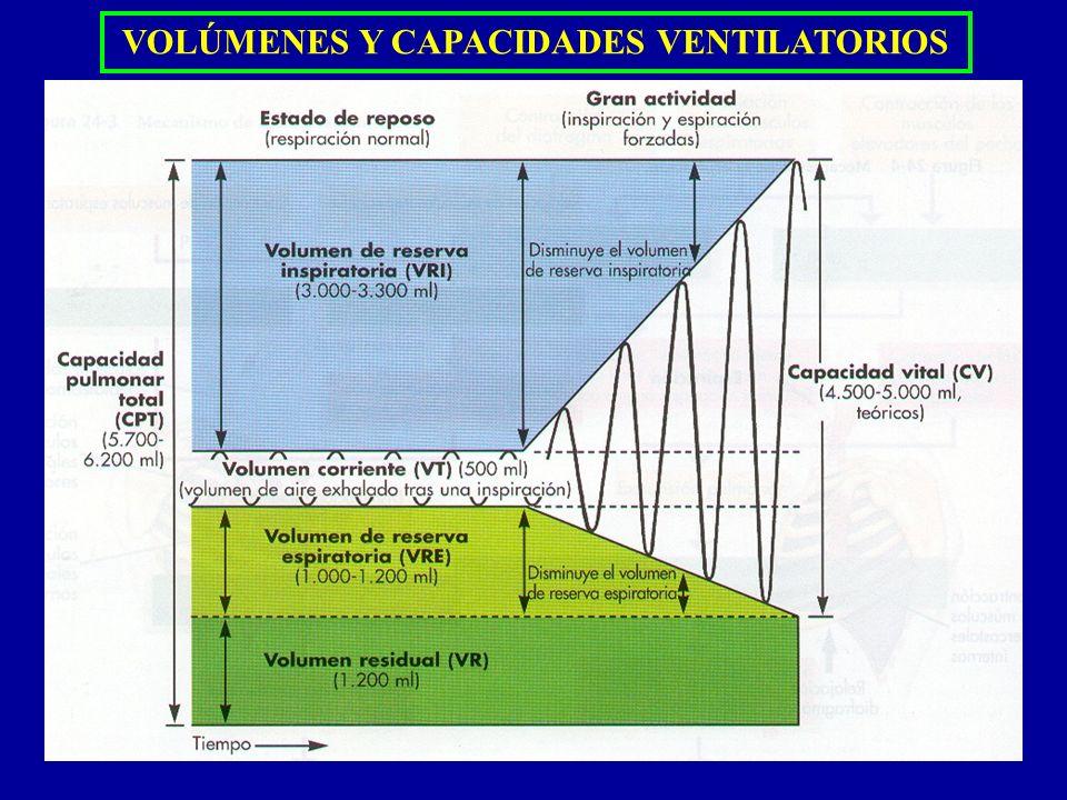 VOLÚMENES Y CAPACIDADES VENTILATORIOS