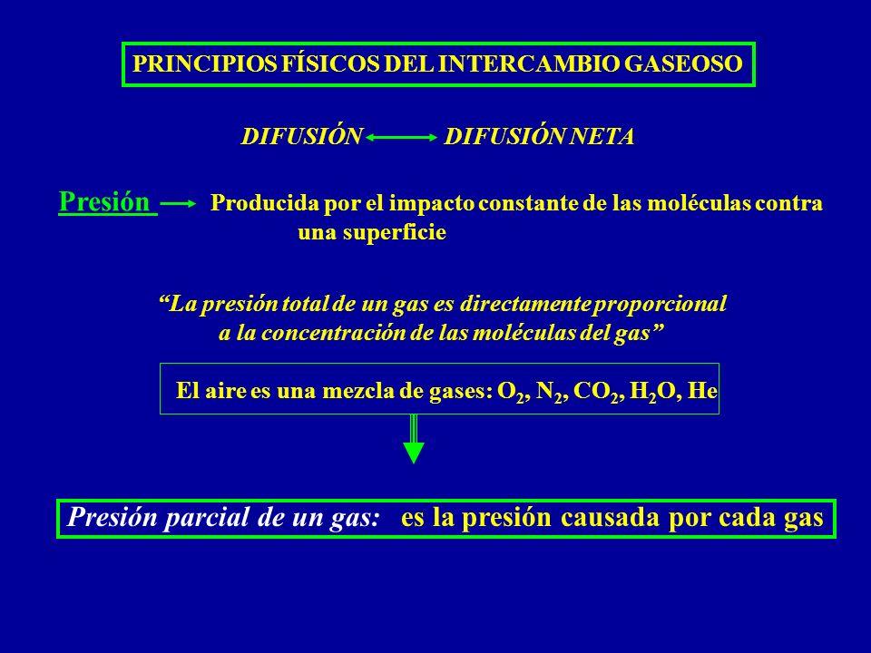 Presión parcial de un gas: es la presión causada por cada gas