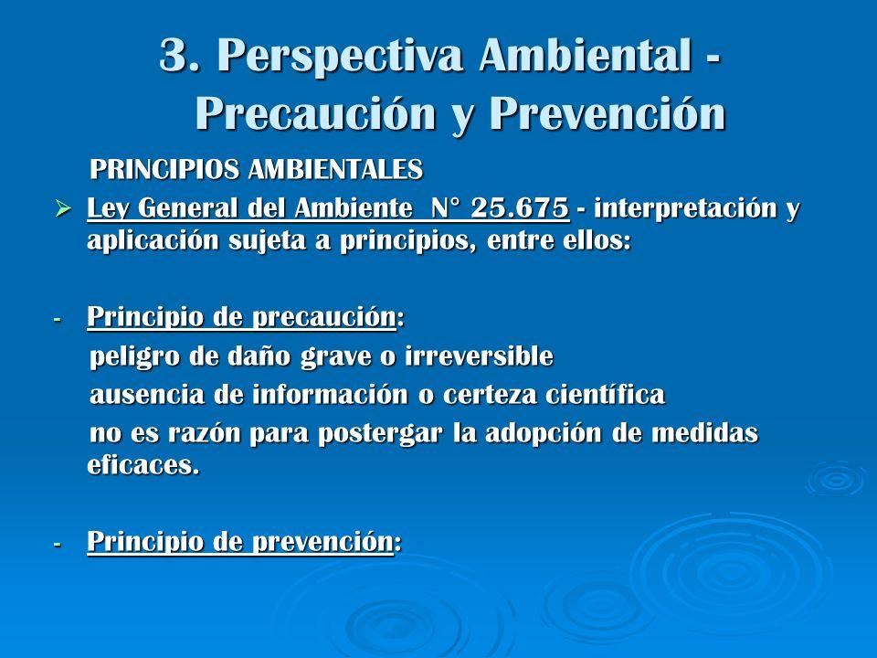 3. Perspectiva Ambiental - Precaución y Prevención