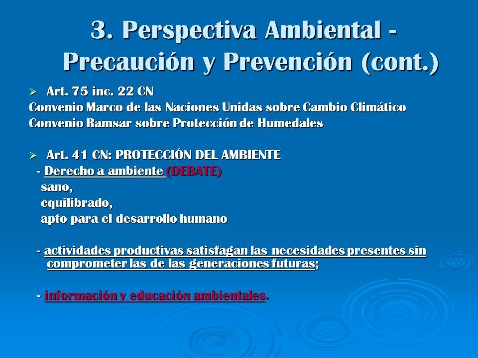 3. Perspectiva Ambiental - Precaución y Prevención (cont.)