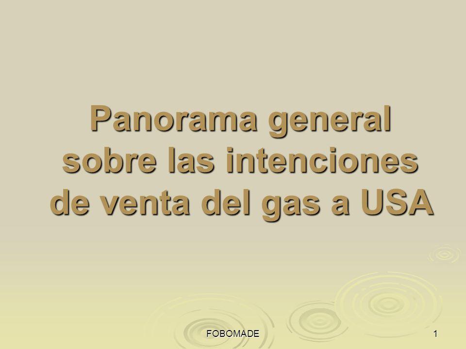 FOBOMADE Panorama general sobre las intenciones de venta del gas a USA
