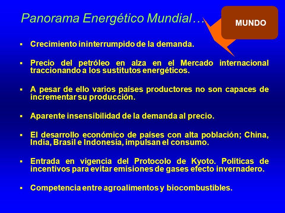 Panorama Energético Mundial….